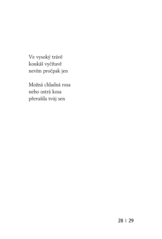Hry_se_slovy_text-100
